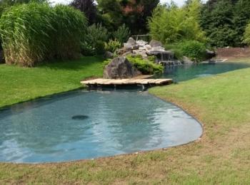 Marie & Philippe Bamps – Jardin Aquatique