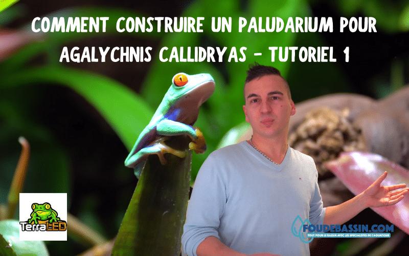 J'ai découvert un passionné de terrarium qui vous partage un tutoriel sur la construction d'un paludarium